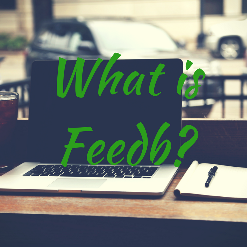 What is Feedb-
